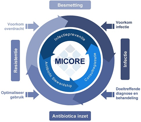 micore-diagram